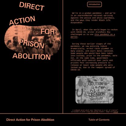 Direct Action for Prison Abolition