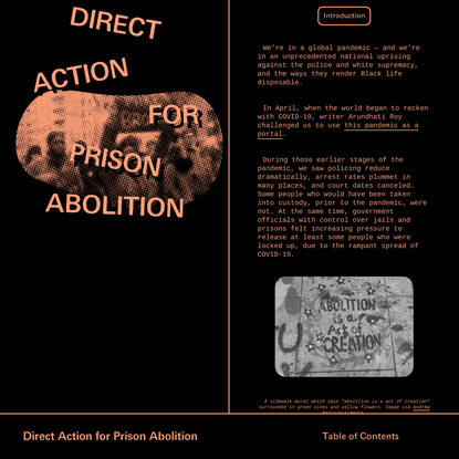 Direct Action for Prison Abolition