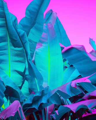 "VISUAL SCIENTIST's Instagram photo: "". . . . . #colorio #sonyalpha #dop #neon #fubiz #サイバーパンク #cinematographer #ignant #an..."