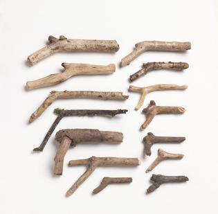Rachel Whiteread's son's stick guns