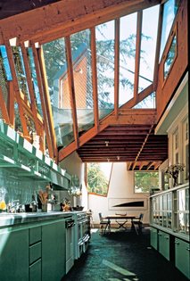 frank gehry's kitchen