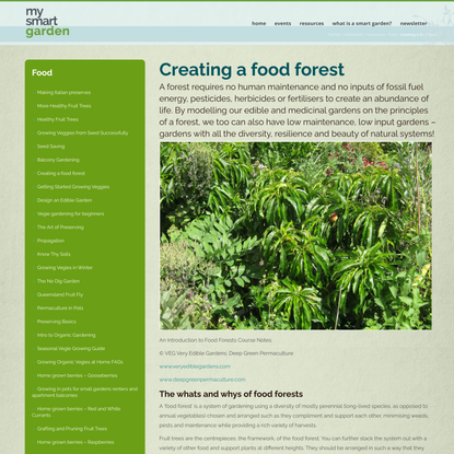 Creating a food forest - My Smart Garden