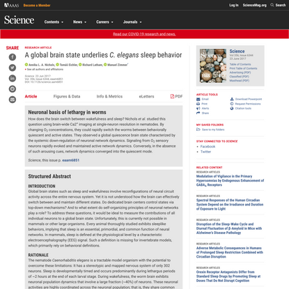 A global brain state underlies C. elegans sleep behavior