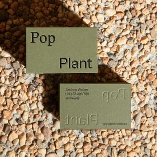 both_pop-plant_4.jpg