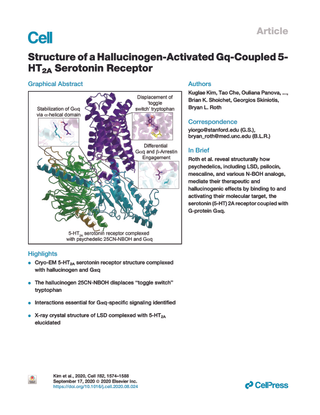 Structure of a Hallucinogen-Activated Gq-Coupled 5- HT2A Serotonin Receptor