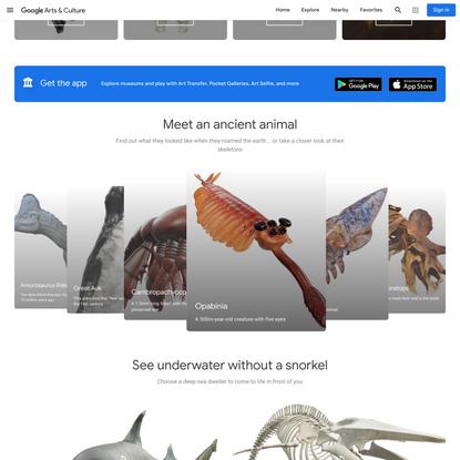 AR - Google Arts & Culture