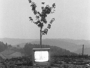 Ernst Caramelle Video Landscapes (1974)