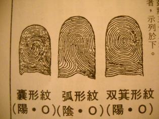 finger-0061.jpg