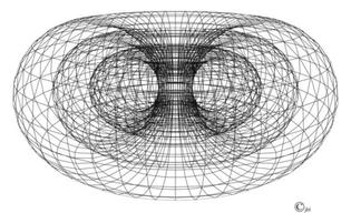 primary-connection-torus-copy.jpg