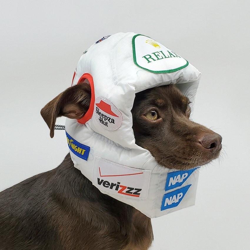 creative-director-rajeev-basu-releases-luxury-helmets-for-dogs-1-5f6e534e9d726.jpg