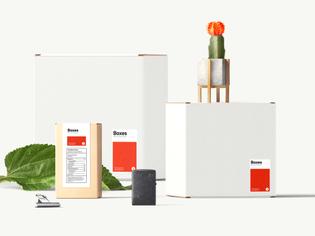 boxes-mockup-1.jpg