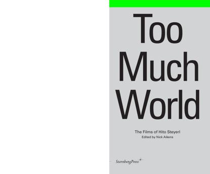 hitosteyerl-toomuchworld.pdf