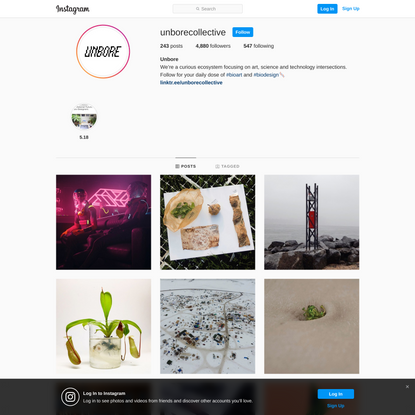 Unbore (@unborecollective) • Instagram photos and videos