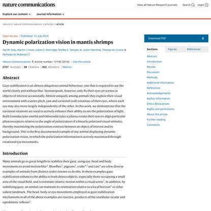 Dynamic polarization vision in mantis shrimps