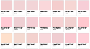 pink pantones