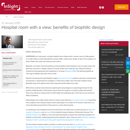 Hospital room with a view: benefits of biophilic design - InSight+