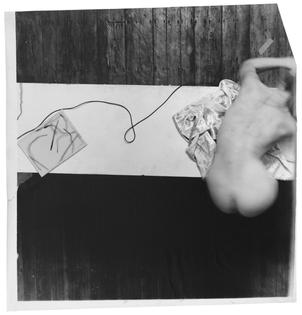 Francesca Woodman - Untitled (Swan Song)