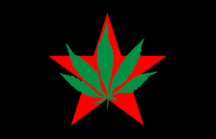800px-flag_of_yippies.svg.png