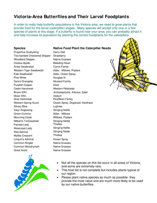 butterfly_food_plants_hummingbird-bird_plants.pdf