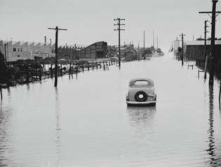 Flood Prevention Cover