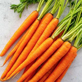 carrots-7-1200.jpg