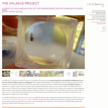 The Hylaeus Project — lisa ann schonberg
