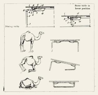 camel_table.jpg