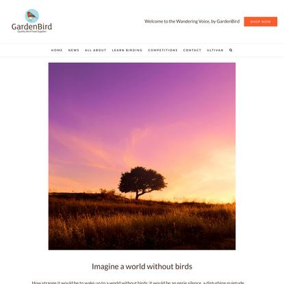 Imagine a world without birds - GardenBird