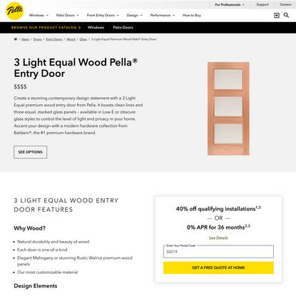 3 Light Equal Wood Pella® Entry Door