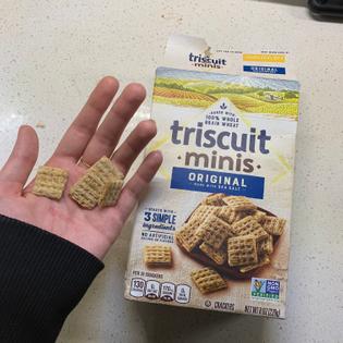 Mini Truscuits