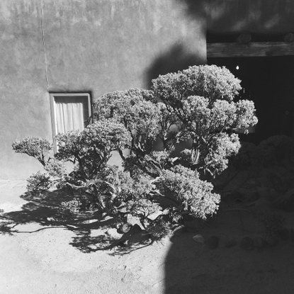 """Natasha Mead on Instagram: """"Tb to Georgia O'Keeffe's home and studio visit in Abiquiú"""""""