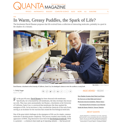 In Warm, Greasy Puddles, the Spark of Life?   Quanta Magazine