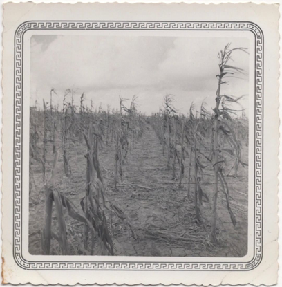 "Joel Rotenberg on Instagram: ""On eBay under out.of.frame, ending next Sunday. #snapshot #snapshots #foundphotos #vernacularp..."