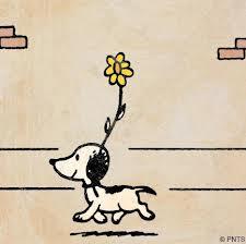 Snoopy's original appearance Oct 4, 1950