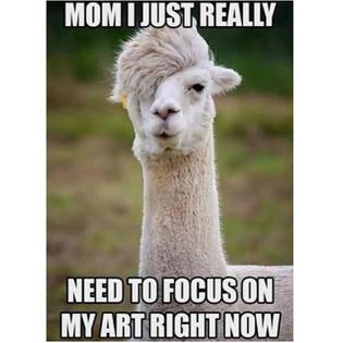 funny-instagram-accounts-12-beigecardigan.jpg