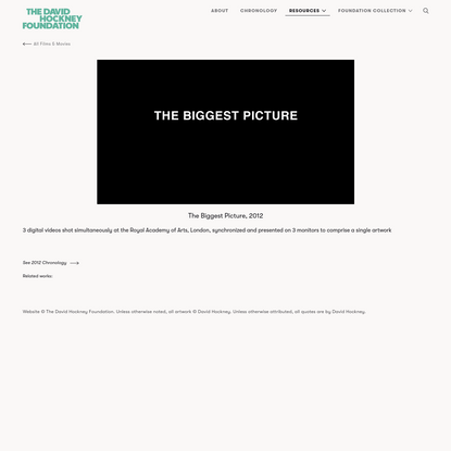 The Biggest Picture (2012)