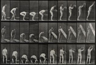 A_man_lifting_a_trunk._Photogravure_after_Eadweard_Muybridge_Wellcome_V0048693.jpg