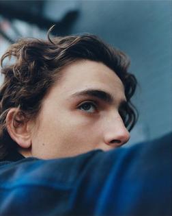 Timothée Chalamet   Actor   Blue   Portrait   Man   Boy   The New York Times Style Magazine