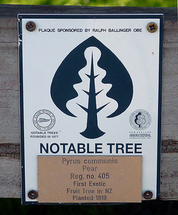 495px-pear_tree_sign.jpg
