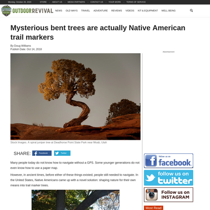 Mysterious bent trees are actually Native American trail markers