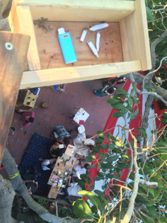 joint box at top of tree house