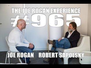Joe Rogan Experience #965 - Robert Sapolsky