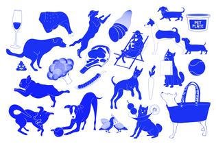 petplate_illustrations.png