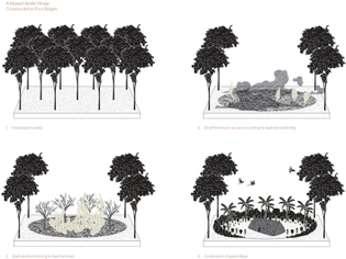 An illustration of the construction of a Kayapó apete village. As Watson writes in Lo-TEK, the Kayapó have protected one of the largest areas of tropical rainforest on the planet.