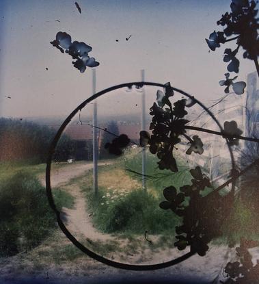 """333 🥀 on Instagram: """"'Outside In,' #StephenGill (2010)"""""""