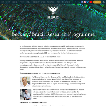 Beckley Brazil Research Programme | The Beckley Foundation