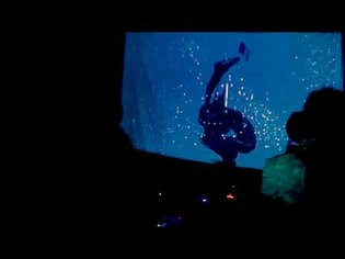ILUSÃO GÓTICA feat. 13A LIVE ON MERA TRANSMISSION   DOMESTIC RAVE