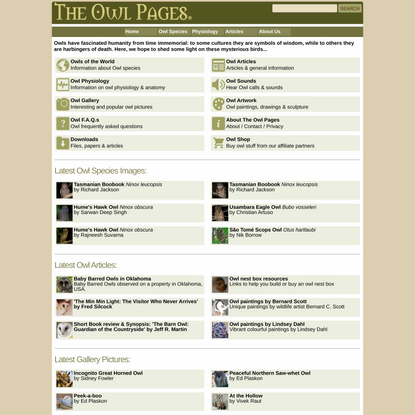 The Owl Pages - Information about Owls