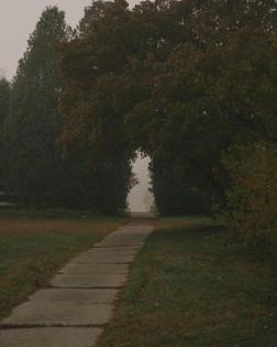 Vanishing Point, Patrick Mccormack