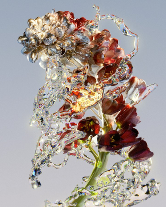 """Benjamin Muzzin on Instagram: """"Another flower clip from my collaboration with @johann.besse 💧🌷💧 #flowers #water #cgi #3drend..."""